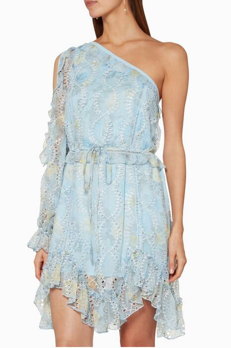 Light-Blue Ruffled Willow Mini Dress